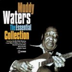 Muddy Waters - The Essential Collection (2000)